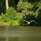 20120815_Chartres_145.jpg