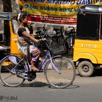 20100327_Pondicherry_017.jpg